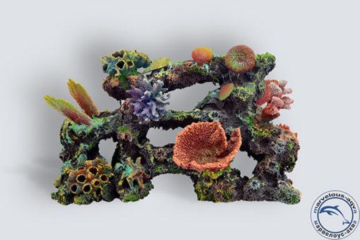 Коралловый-риф-С-001