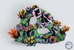 Коралловый-риф-СП-001