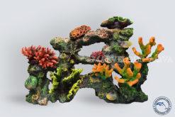 Коралловый-риф-С-002