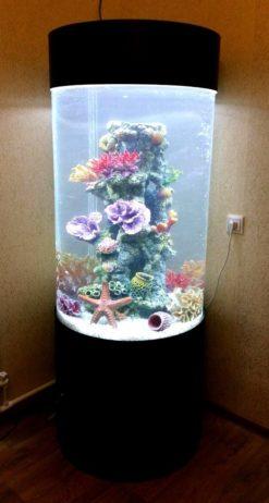 Аквариумы более 200 литров