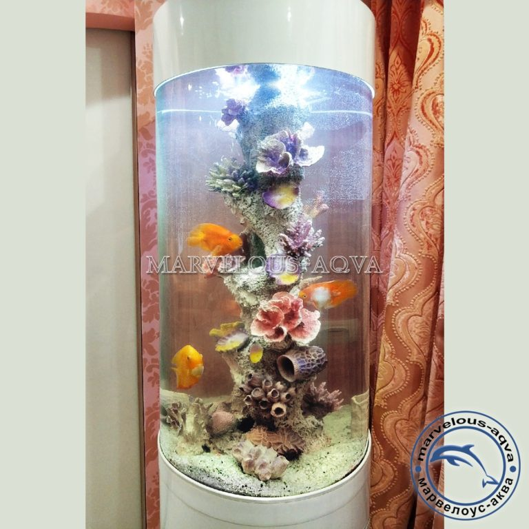 купить аквариум в челябинске