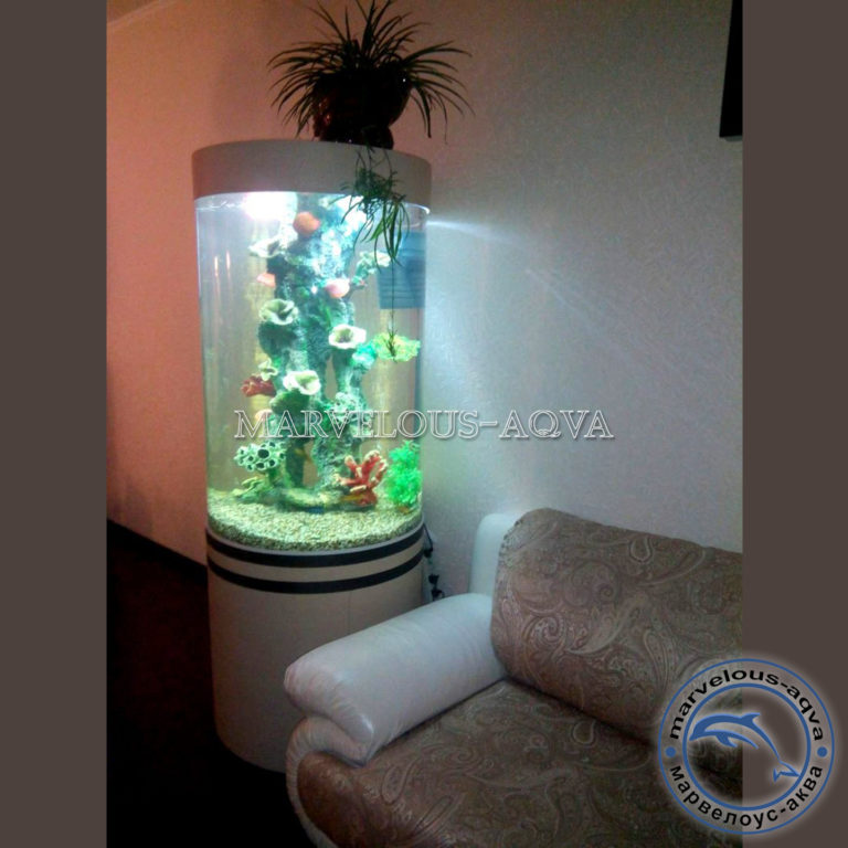 аквариум цилиндр в зале
