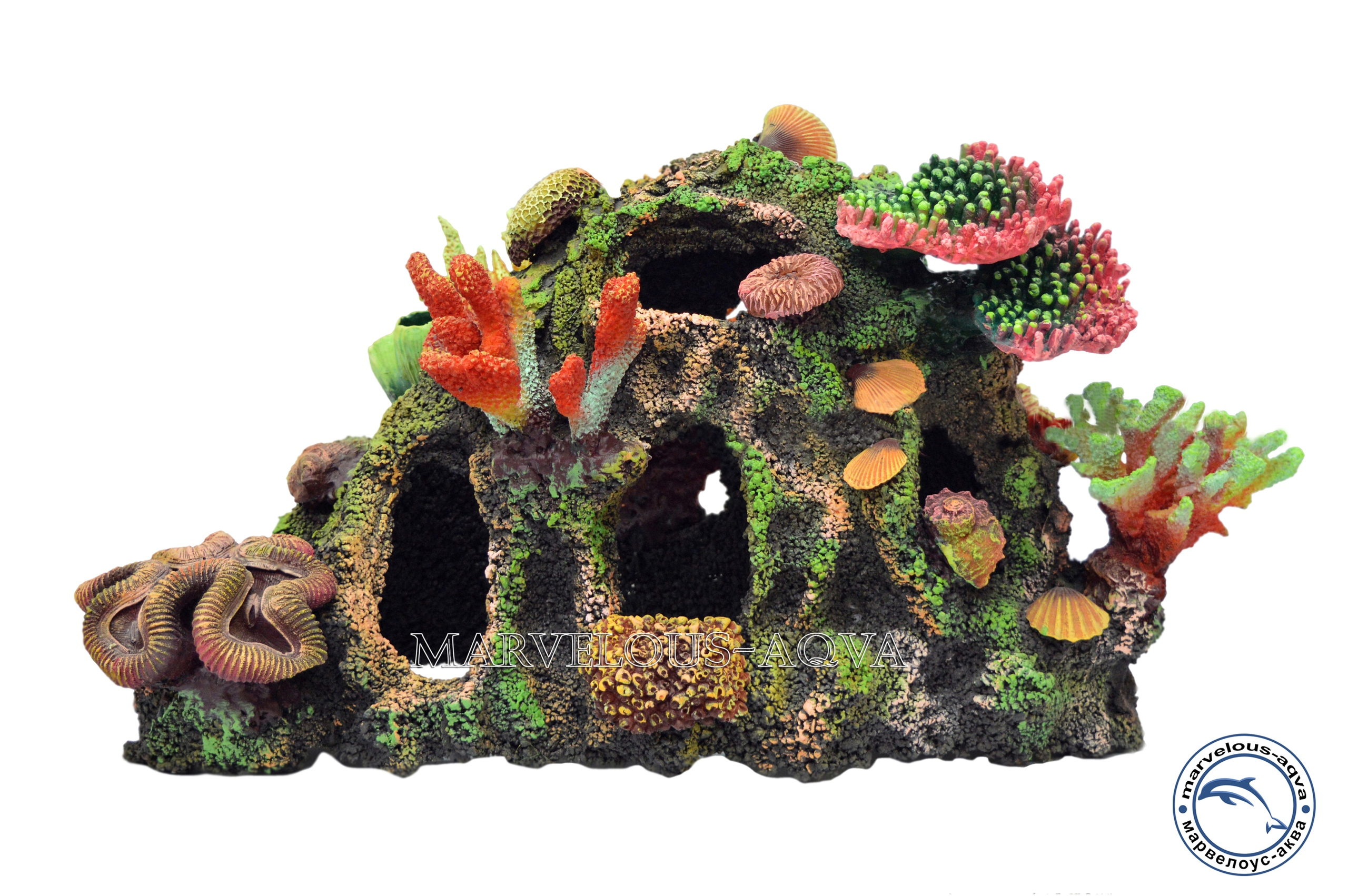 псевдоморе коралл