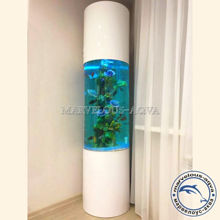цилиндрический аквариум марвелоус