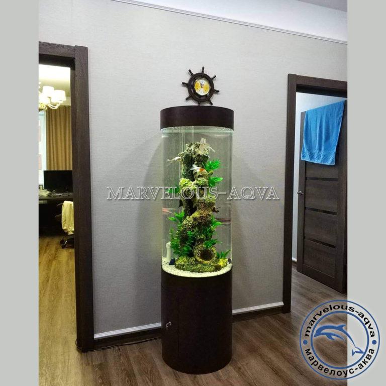 Аквариум цилиндр для дома
