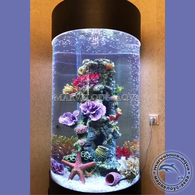 большой цилиндрический аквариум